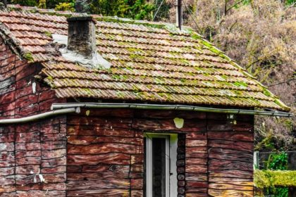 Why Is It Important To Keep A Roof Moss Free