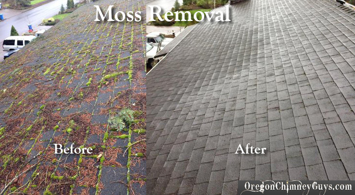 before and after moss removal